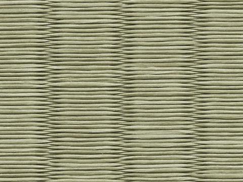銀白 極 22 山葵色